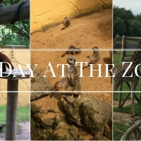 A Day At The Zoo: Banham Zoo